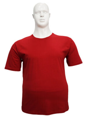 Koszulka T-Shirt-146B - PACZKA