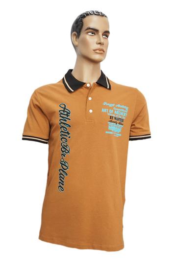 Koszulka Polo B166 wzór 2 - PACZKA