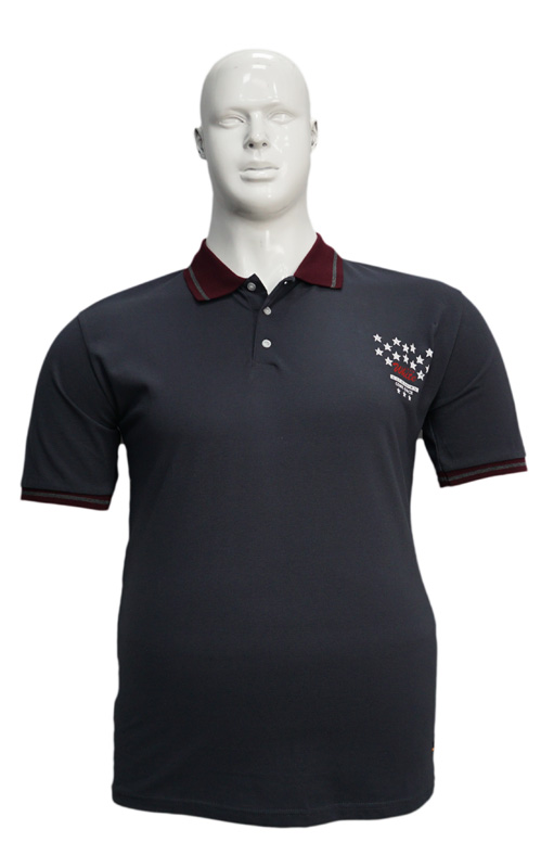 Koszulka Polo B167 wzór 1 - PACZKA