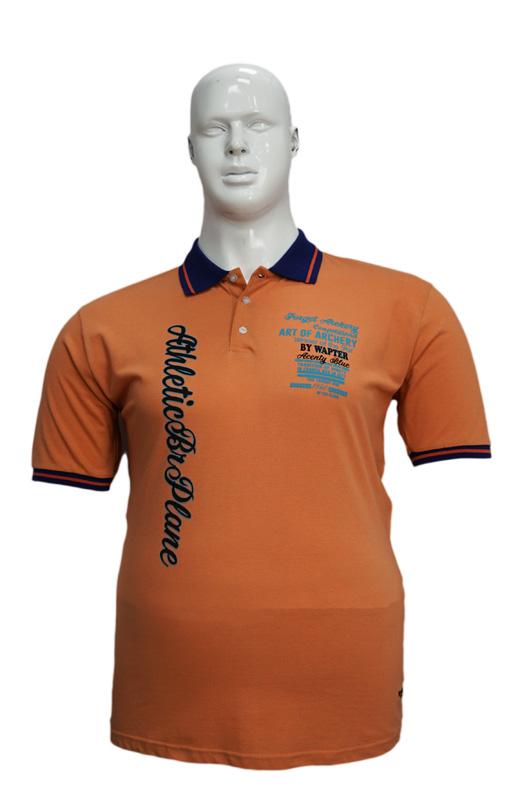 Koszulka Polo B167 wzór 5 - PACZKA