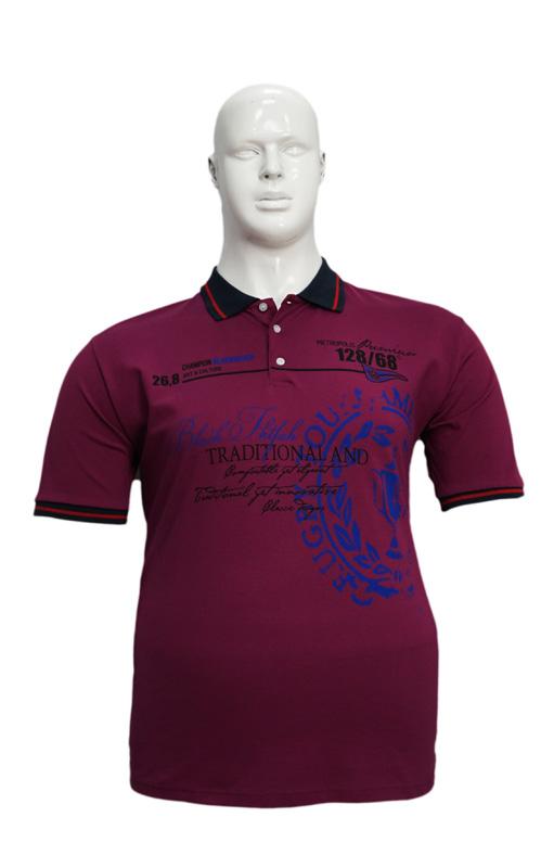 Koszulka Polo B167 wzór 8 - PACZKA